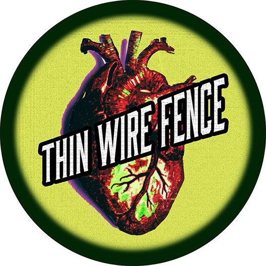 Thin Wire Fence